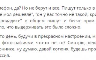 Как правильно и быстро подать объявление на Авито.ру