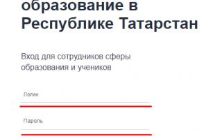 Электронное образование в Республике Татарстан и его основные возможности