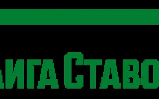 Лига ставок букмекерская контора — официальный сайт, отзывы, обзор