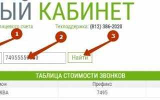 Скайнет личный кабинет — подключение и отключение услуг от провайдера