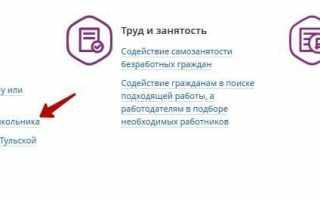 ЕСИА портал госуслуг 71 региона, личный кабинет