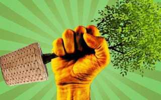 Декларация по НВОС в 2020 году — ставки платы