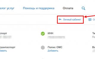 Личный кабинет Госуслуги Уфа – официальный сайт, вход, регистрация
