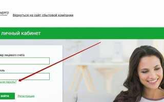 ТНС Энерго Нижний Новгород: вход в личный кабинет