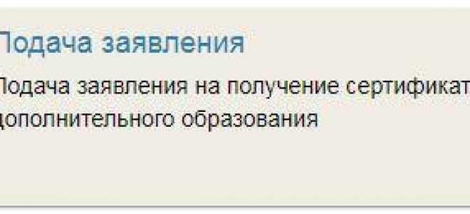 Жителям Калининграда начнут выдавать сертификаты на дополнительное образование для детей