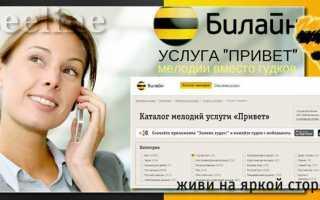 Всевозможные способы для отключения услуги «Привет» на Билайне