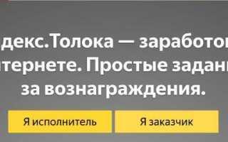 Работа в Яндекс через Толоку – вход в личный кабинет, примеры заданий и вывод денег