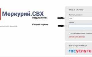 Меркурий Россельхознадзор вход в личный кабинет mercury.vetrf.ru