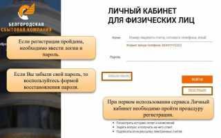 Белгородэнергосбыт — передать показания счетчика (belsbyt.ru)