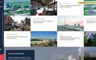 Личный кабинет Сибэко (Сибирская энергетическая компания)