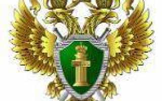 Госуслуги в Вятских Полянах