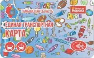 Транспортная карта Береста Великий Новгород — где оформить, как проверить баланс, способы пополнения