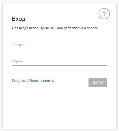 schelkovo-net3.jpg
