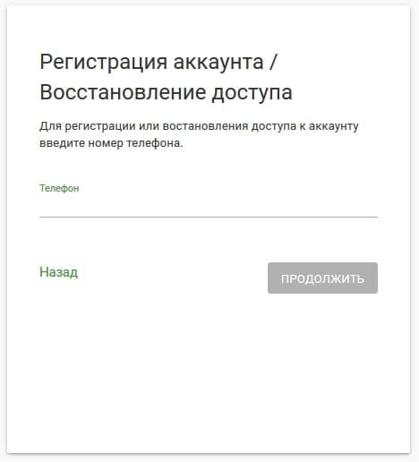 schelkovo-net4.jpg