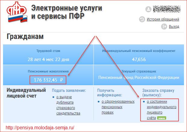 kak-uznat-svoi-pensionnye-nakopleniya.png