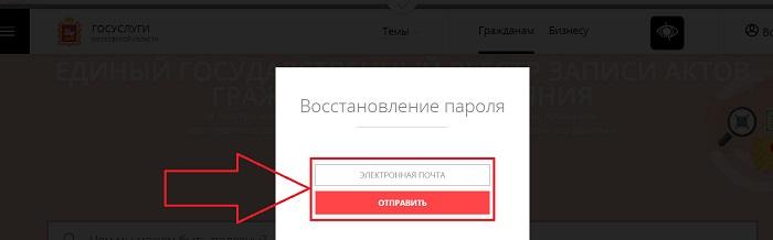 gosuslugi-moskovskoj-oblasti%20%288%29.jpeg