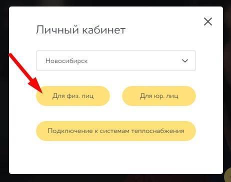 6_ukazhite_dlya_fizicheskih_lic.jpg