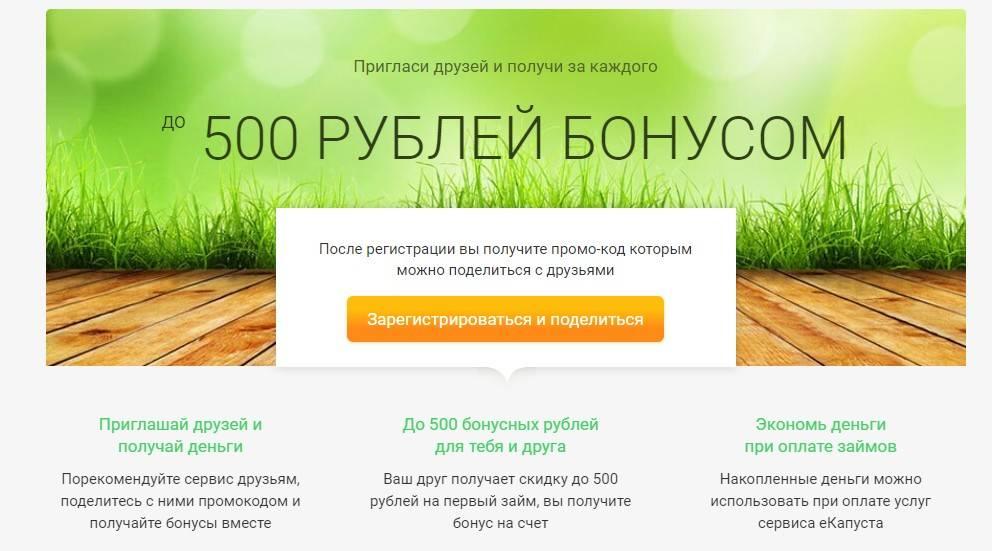bonusnaya-partnerskaya-programma-ekapusty.jpg