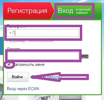 3-gosuslugi-rt-tatarstan-lichnyy-kabinet.png