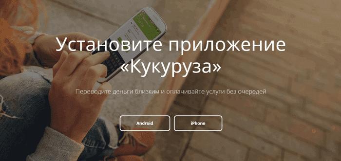mobilnoe-prilozhenie-kukuruza-1.png