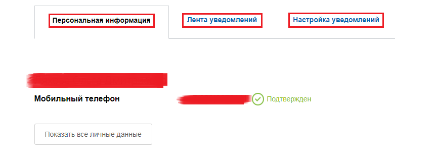 2-gosuslugi-lichnyj-kabinet.png