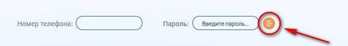 ric_ulyanovsk_lk_step2.jpg