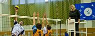 sportlife.png