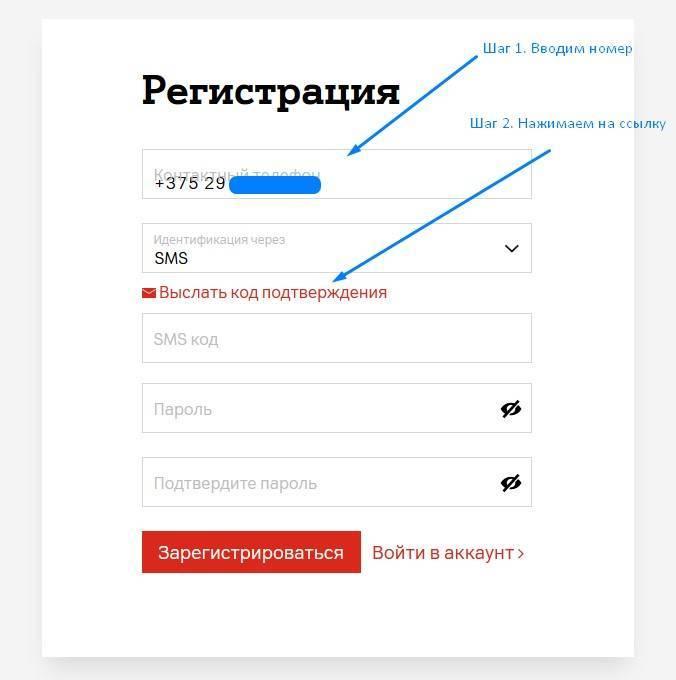 vvod-nomera-dlya-registracii.jpg