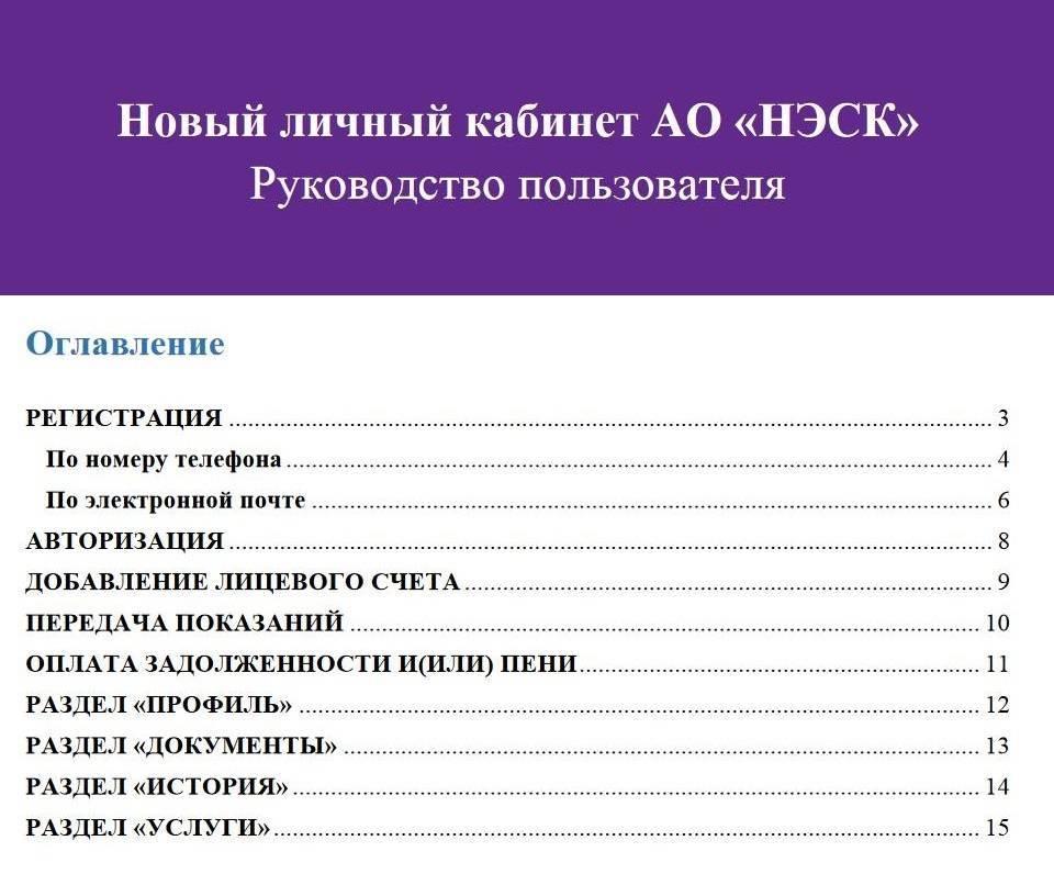 novyy_lichnyy_kabinet_nesk_dlya_fizicheskikh_lits-2.jpg