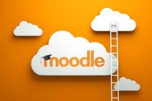 moodle-ladders-300x200.jpg