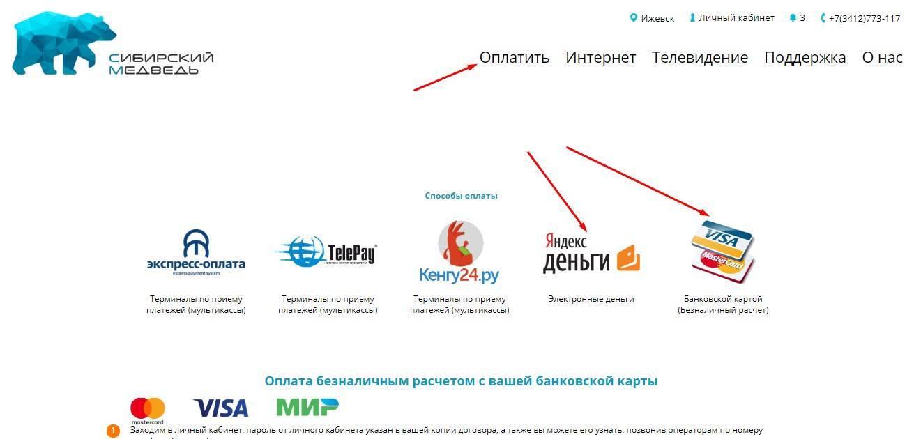 13_oplata_s_karty_i_elektronnogo_kosheljka.jpg
