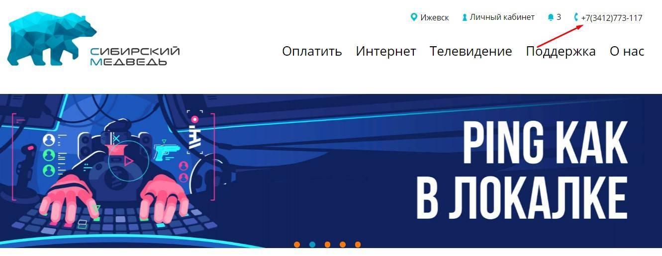 14_telefon_sibirskii_medvedj_dlya_svyazi.jpg