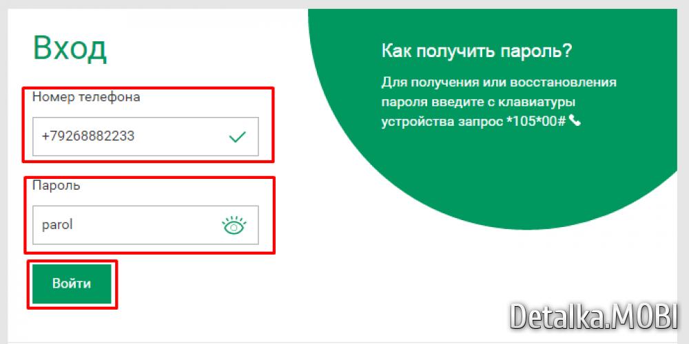 xdetalizaciya-zvonkov-megafon-besplano-cherez-internet-2.png.pagespeed.ic.WNKJSQFB_r.png