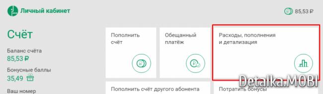 xdetalizaciya-zvonkov-megafon-besplano-cherez-internet-3.png.pagespeed.ic.vuaq9n9fWC.png