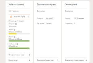 Kartinka-5.-Detalizatsiya-v-lichnom-kabinete-300x202.jpg