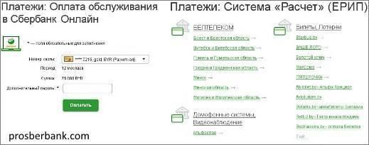 oplata-dbo-i-sistema-raschetov-erip.jpg
