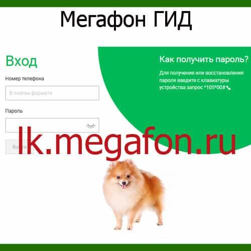 Servis-Megafon-GID.jpg