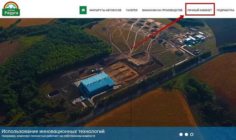 gribnaya-raduga2.jpg