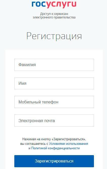 gosuslugi-polya.jpg