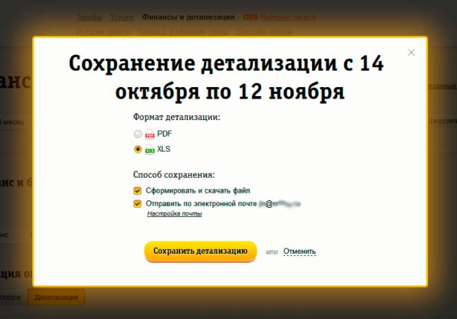 detalizaciya-scheta-beeline4.png