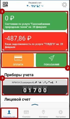 Litsevoj-schet.jpg