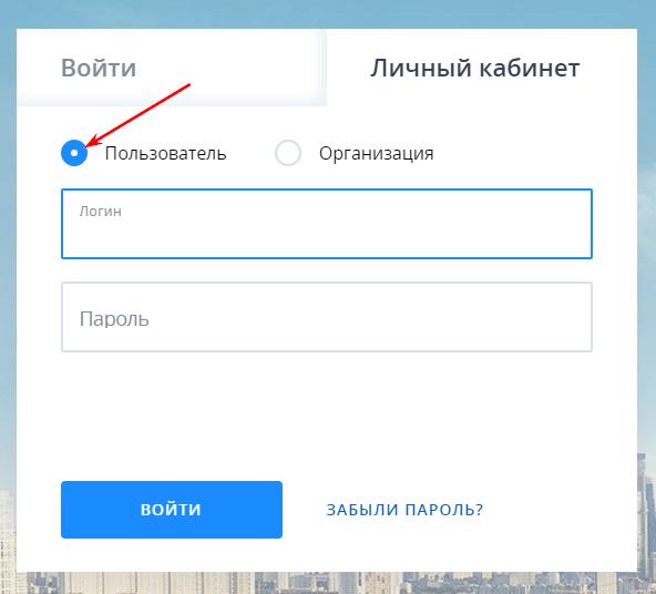 vhod-v-lk-v-kachestve-polzovatelya.png