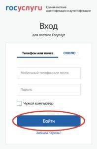 lichnyy_kabinet_gosuslugi_1-197x300.jpg