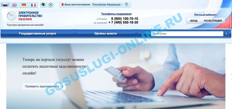 staraya_versiya_gosuslug_1.png