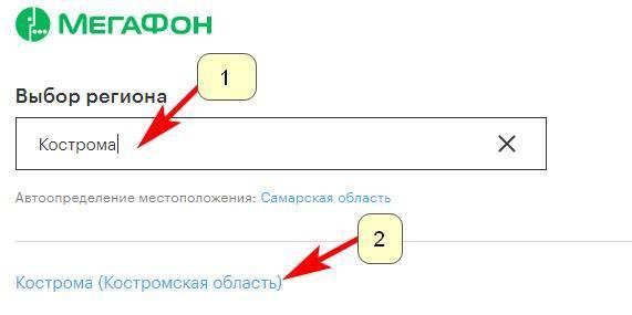 megafon-kostroma-1.jpg
