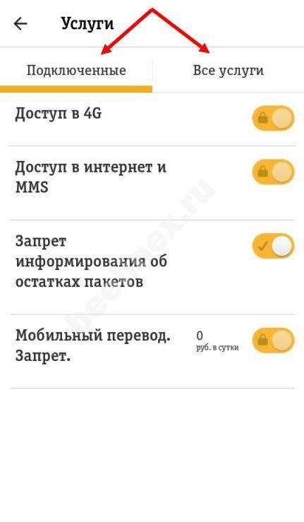 Kak-uznat-podklyuchennye-uslugi-13.jpg