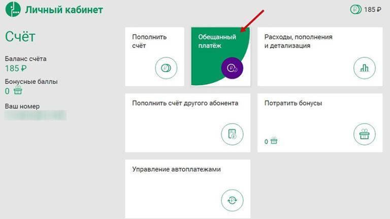 2-vzyat-obeshchannyy-platezh-na-megafone.jpg