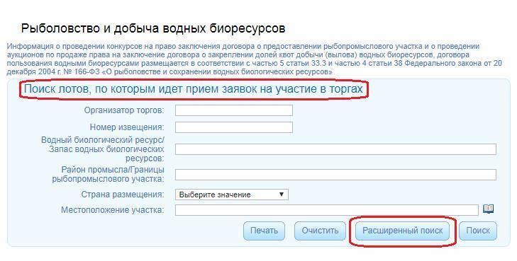 main-torgi-gov-ru-5.jpg