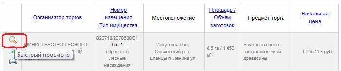 main-torgi-gov-ru-7.jpg