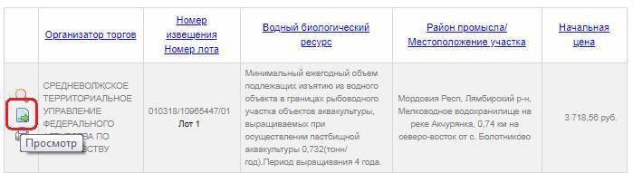 main-torgi-gov-ru-8.jpg